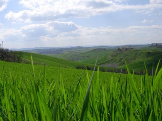 Panorama nei dintorni di Cortona