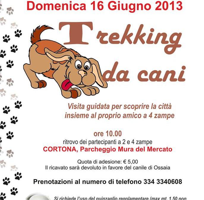 Trekking da cani, visita guidata a Cortona
