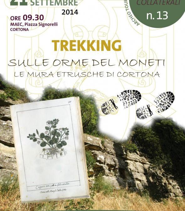 Sulle orme del Moneti – trekking a Cortona